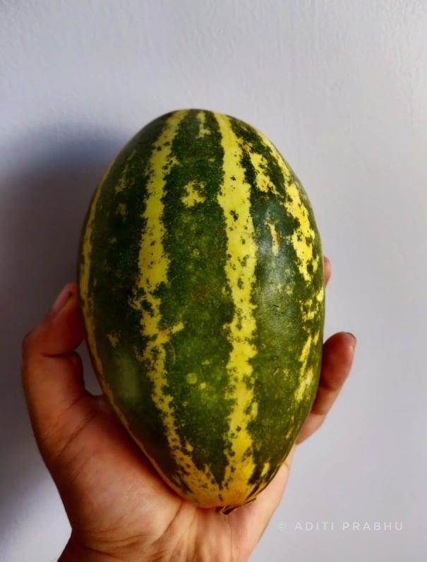 Madras Cucumber